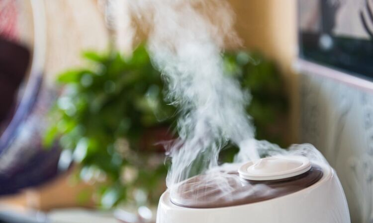 Use a humidifier in your house