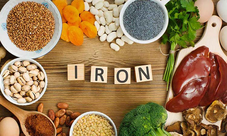 Protein and Iron Intake
