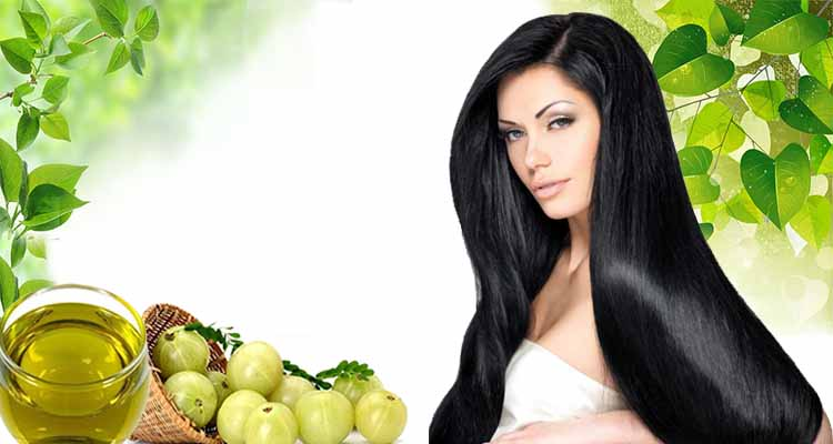Amla Hair Oil Benefits