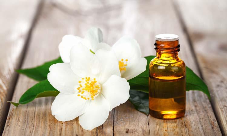 Aromatic fragrance of jasmine oil