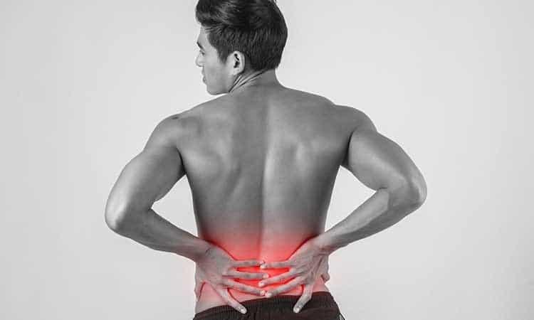 Ayurvedic Balm for Back Pain