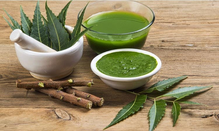 7 Awesome Benefits of Neem in your Life