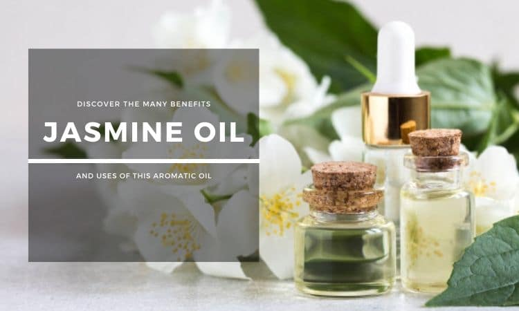 Jasmine Oil: Discover the Many Benefits and Uses of This Aromatic Oil