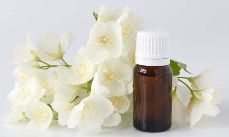 benefits of jasmine oil for hair
