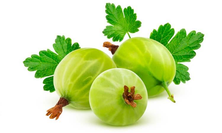 benefits of eating amla