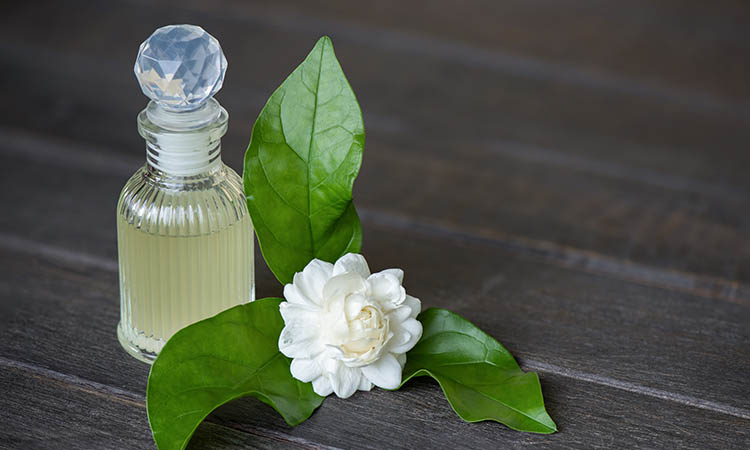 jasmine oil benefits for skin