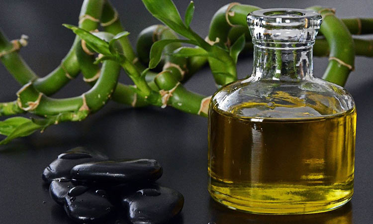 The reasons behind oil massage