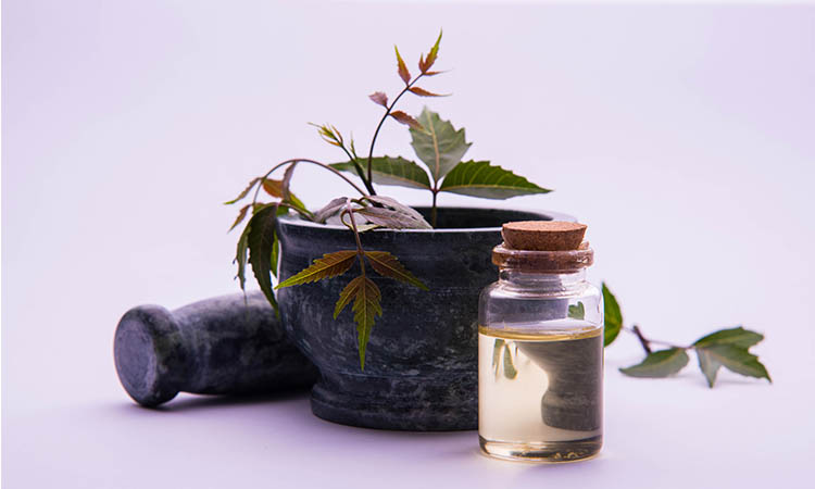Ayurvedic hair oils